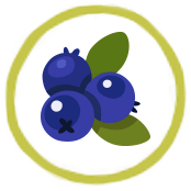 Image result for banana and blueberry icon