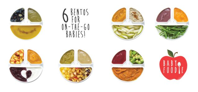 6 Bentos For On-The-Go Babies