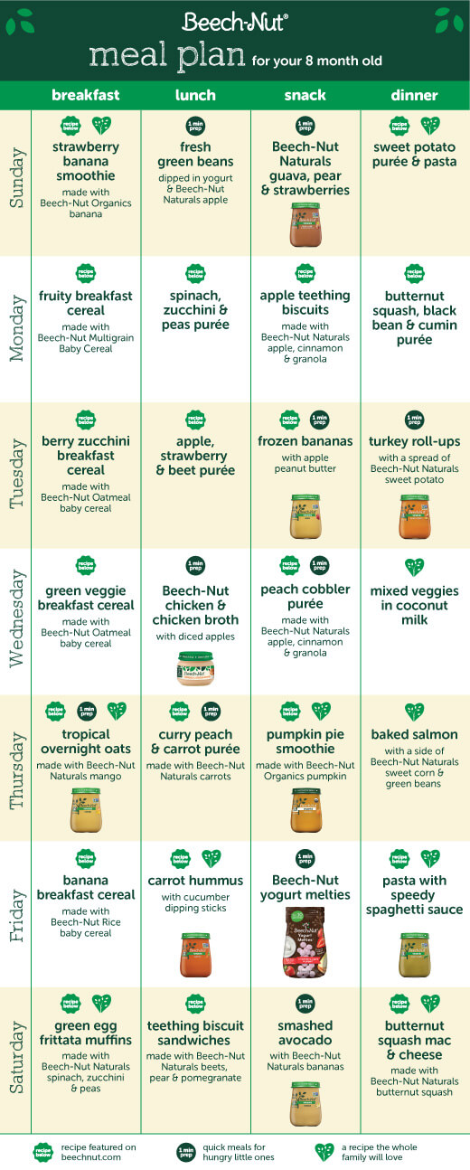 meal plan 8-month-old