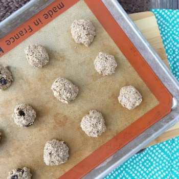 Healthy Cookie Alternative